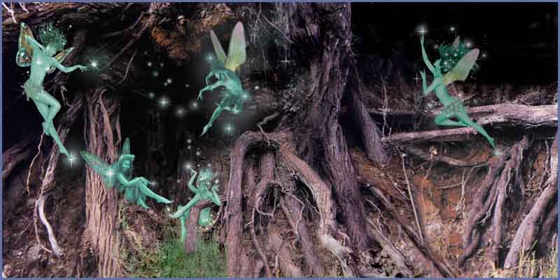 Images of Fairies